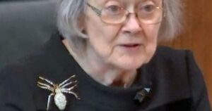 Baroness Hale spider brooch